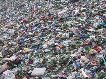 """上海浦东废品回收公司"""""""