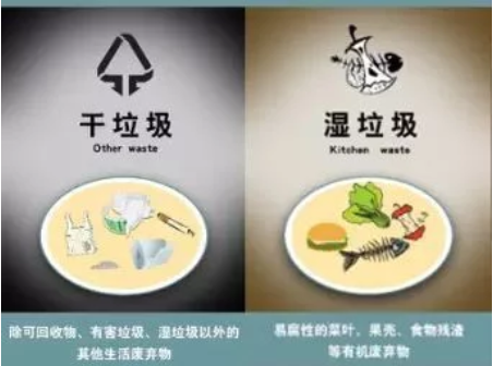 【垃圾分类】上海明确生活垃圾分类投放的责任主体为单位和个人